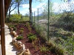 Jardines de estilo rural por Studio Botanico Ventrone Dr. Fulvio