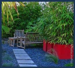 Jardin urbain: Jardin de style de style Moderne par Végétal Attitude
