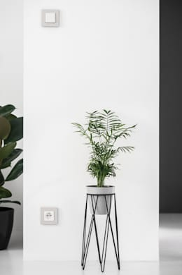 minimalistic Living room by Joanna Kubieniec