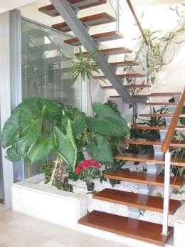 Jardines de invierno de estilo moderno por SOLE ATELIER, LDA