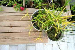 Panca su misura: Terrazza in stile  di Atelier delle Verdure