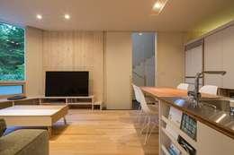 富谷洋介建築設計의  거실