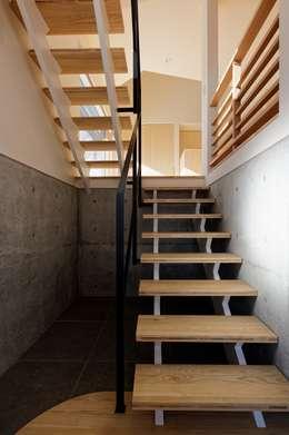 段差を繋ぐ家: 富谷洋介建築設計が手掛けた廊下 & 玄関です。