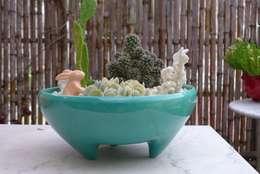 Jardines de estilo minimalista por CURADORAS