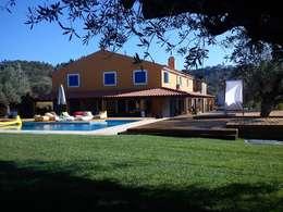Jorge Feio, Arquitecto:  tarz