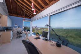 Estudios y oficinas de estilo topical por Ronald T. Pimentel Fotografia