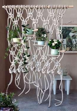 تصميم مساحات داخلية تنفيذ Pflanzenfreude.de