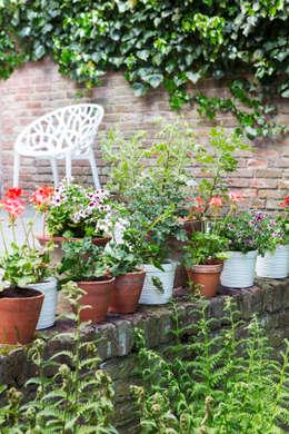 balkonpflanzen tipps und tricks f r deine gr ne oase. Black Bedroom Furniture Sets. Home Design Ideas