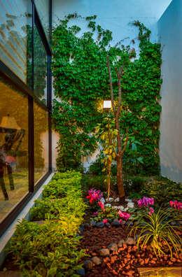 Jardines de estilo moderno por Wowa