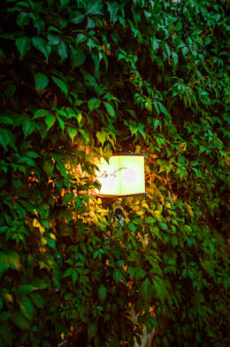 [Casa SD]: Jardines de estilo moderno por Wowa