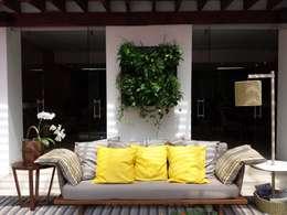 Jardim Vertical: Jardins tropicais por Bruno Carettoni Arquitetura Paisagística & Ecodesign