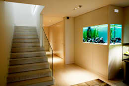 moderne Gang, hal & trappenhuis door ADn Aquarium Design