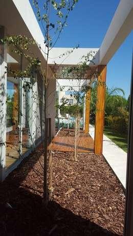 Talar del Lago II: Jardines de estilo minimalista por estudio|44