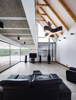modern Living room by BECZAK / BECZAK / ARCHITEKCI