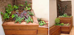 Bacs plantés en bois sur terrasse: Terrasse de style  par Constans Paysage