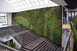 Jardines de estilo moderno por Verde & Verde Ingenieros & Arquitectos SAS