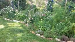 by Maria Mayer | Garden & Flower Design