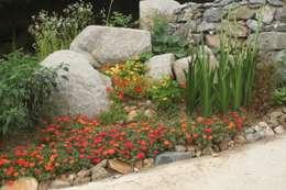 팀버 플레임 하우스 (분홍집): Kim&Kim Studio의  정원