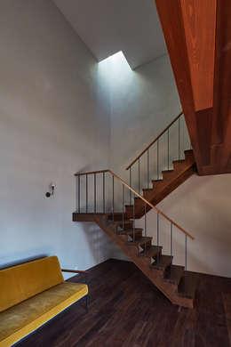 SHIMA: KEITARO MUTO ARCHITECTSが手掛けた廊下 & 玄関です。