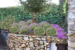 Jardin de style de style Méditerranéen par homify