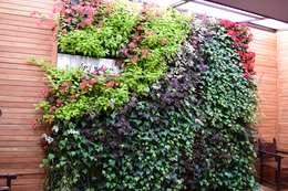 Jardín vertical Hermanos Capuchinos Bogotá D.C: Jardines de estilo rústico por Verde & Verde Ingenieros & Arquitectos SAS
