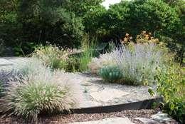 Un jardin naturel: Jardin de style de style Méditerranéen par JARDIN GECKO