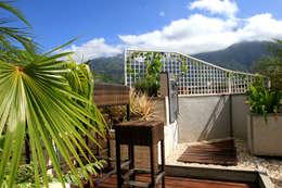 Jardines de estilo moderno por Arq Renny Molina