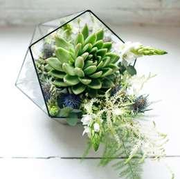 Binnenbeplanting door Mini Nature