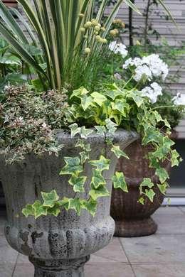 modern Garden by 庭のクニフジ