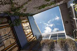 Galpón Lola: Casas de estilo industrial por Pop Arq