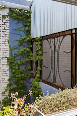 Projekty,  Okna zaprojektowane przez Pop Arq