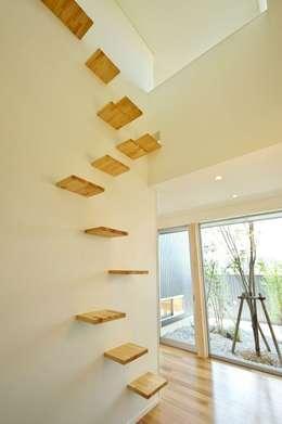 猫階段のある玄関ホール: 有限会社 橋本設計室が手掛けた玄関・廊下・階段です。
