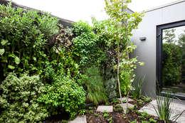 Jardin de style de style Moderne par VERDE360