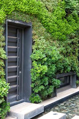 Jardines de estilo moderno por VERDE360
