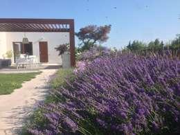 Contemporary garden: Giardino in stile in stile Moderno di GAAP Studio Giorgio Asciutti Architetto Paesaggista