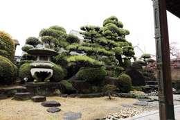 Jardins asiáticos por 杉田造園 株式会社