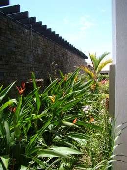 Casa Caracoli: Jardines de estilo mediterráneo por David Macias Arquitectura & Urbanismo