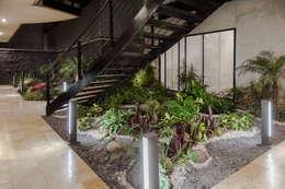 Sinaloa 20: Jardines de estilo moderno por PHia