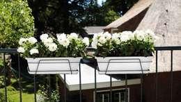 Balcones y terrazas de estilo  por Elho México