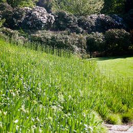 Jardin de style de stile Rural par Stephan Maria lang Architektengesellschaft