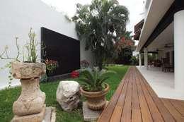 Residencia P-L: Jardines de estilo clásico por AIDA TRACONIS ARQUITECTOS EN MERIDA YUCATAN MEXICO