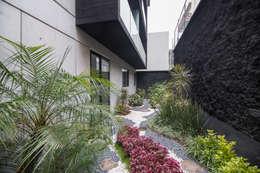 modern Garden by PHia