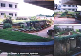 various Residential: tropical Garden by iammies Landscapes