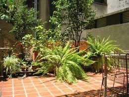 Jardín Giuntoli: Jardines de estilo moderno por Dhena CONSTRUCCION DE JARDINES