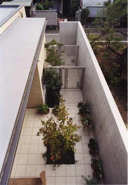 高窓と中庭の家-高低差を活かす-: atelier mが手掛けた庭です。