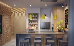 industrial Kitchen by Natalia Solo Design
