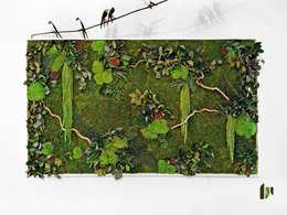 Murs et tableaux végétaux: Paysagisme d'intérieur de style  par Adventive