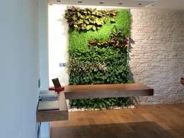 Jardines de estilo moderno por Terapia Urbana, Diseño de jardines verticales