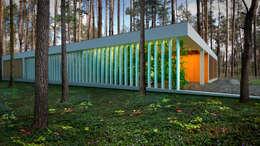 Дом 290 м2 г.Ирпень (Киевская область): Дома в . Автор –  Aleksandr Zhydkov Architect