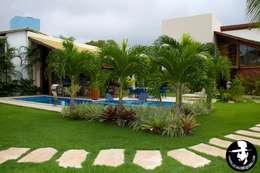 JARDIM PISCINA: Jardins tropicais por Tânia Póvoa Arquitetura e Decoração
